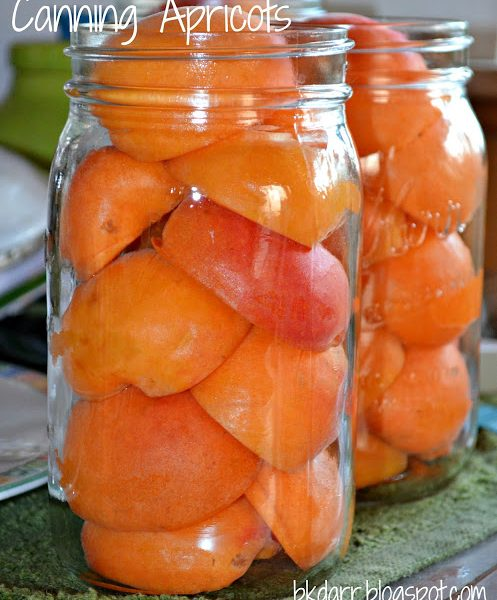 Canning Apricots