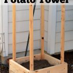 The Darr Garden 2014 & DIY Potato Tower