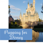 Tips to Prep for Disney