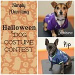 Halloween Dog Costume Contest