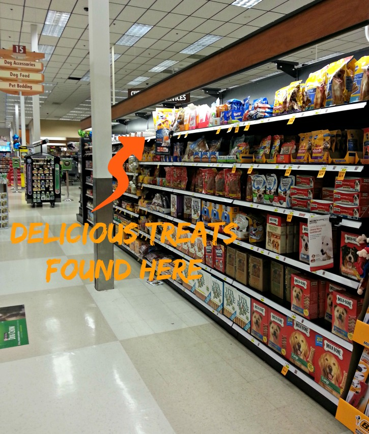 Halloween Treats for Dogs at Fred Meyer #shop