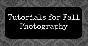Fall Photography Tutorials