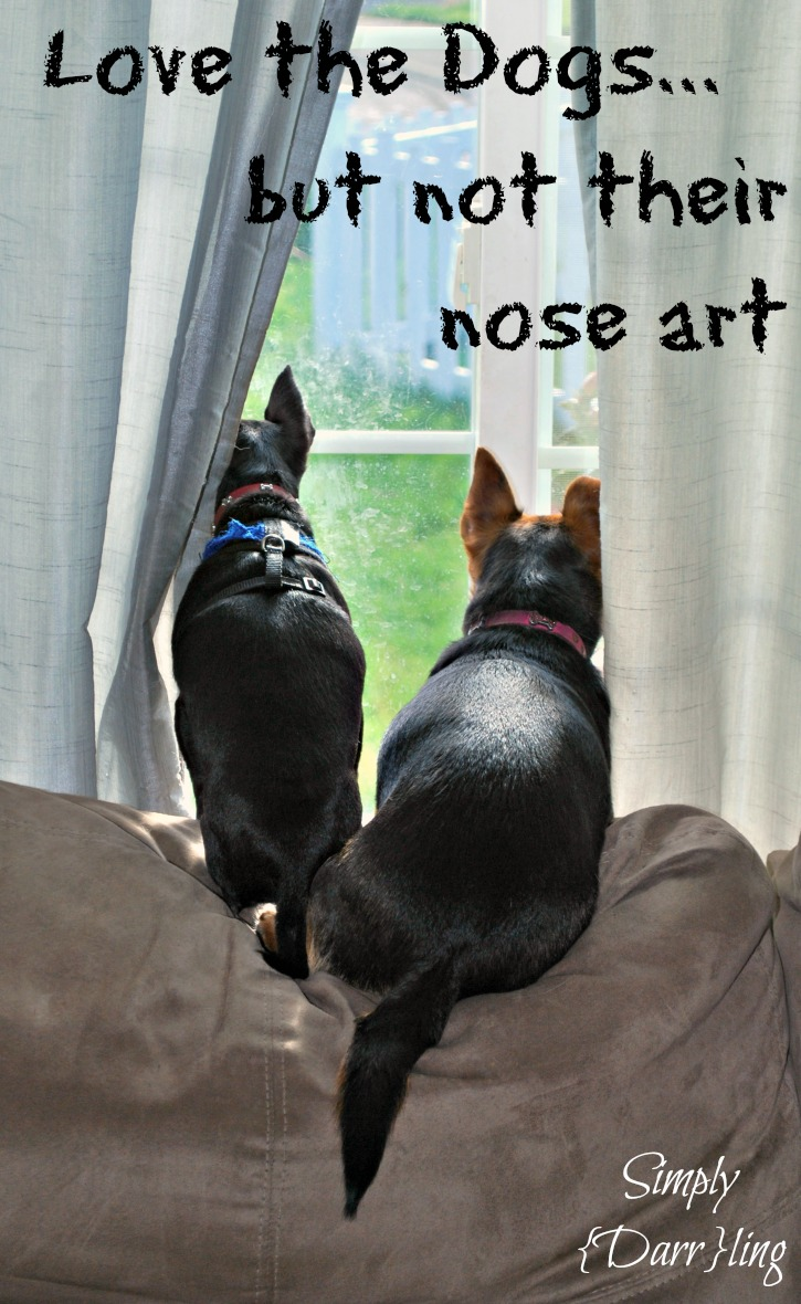 2 Dogs looking out the Window