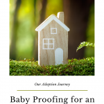 Open Adoption Babyproofing for the homestudy