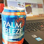 Plan a BBQ with Palm Breeze