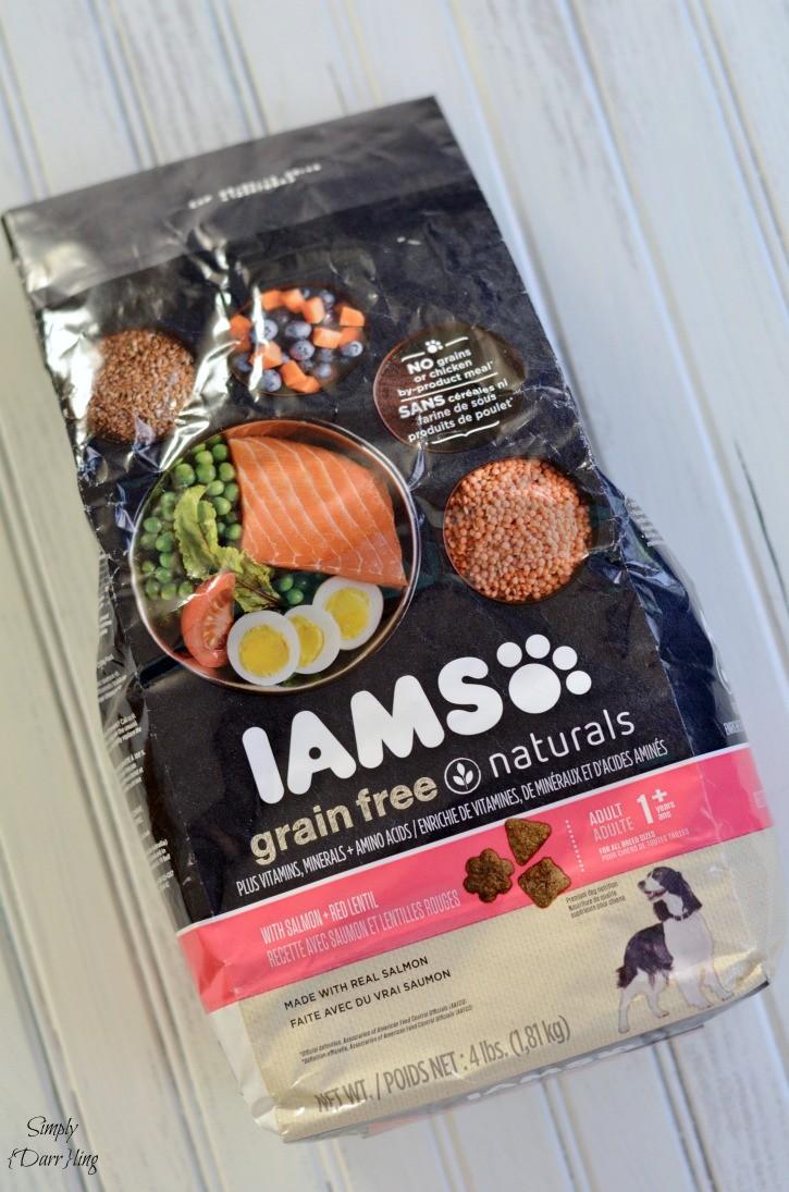 iams-dog-food-725x1095