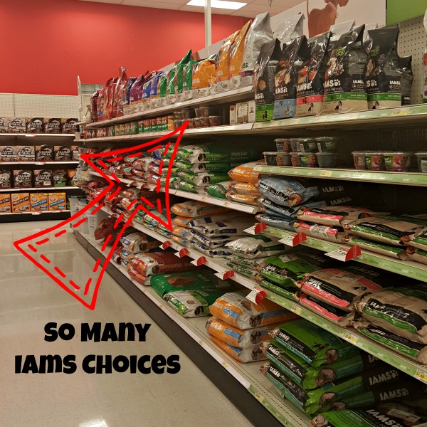IAMS dog food at Target