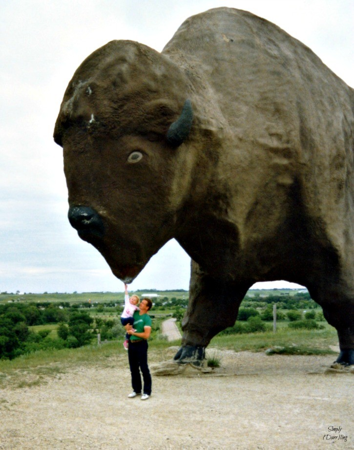 Worlds Largest Buffalo
