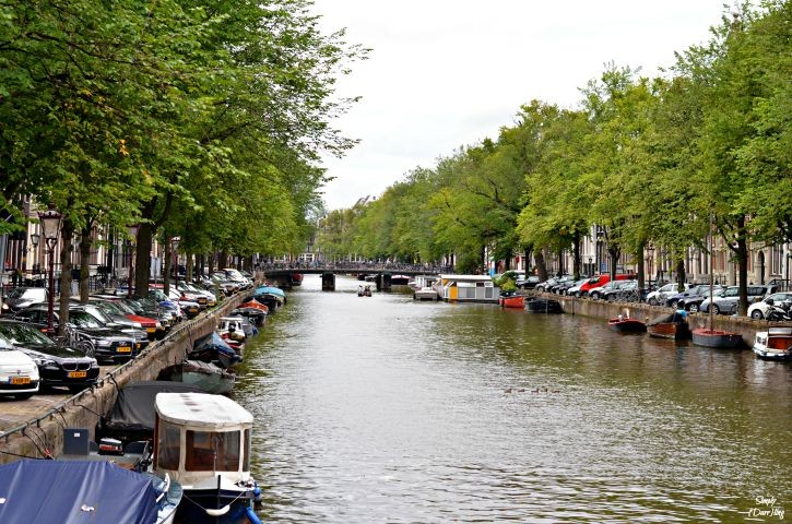 22 hours in Amsterdam - tips for an extended layover