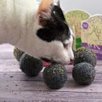 DIY Felted Catnip Ball Toys