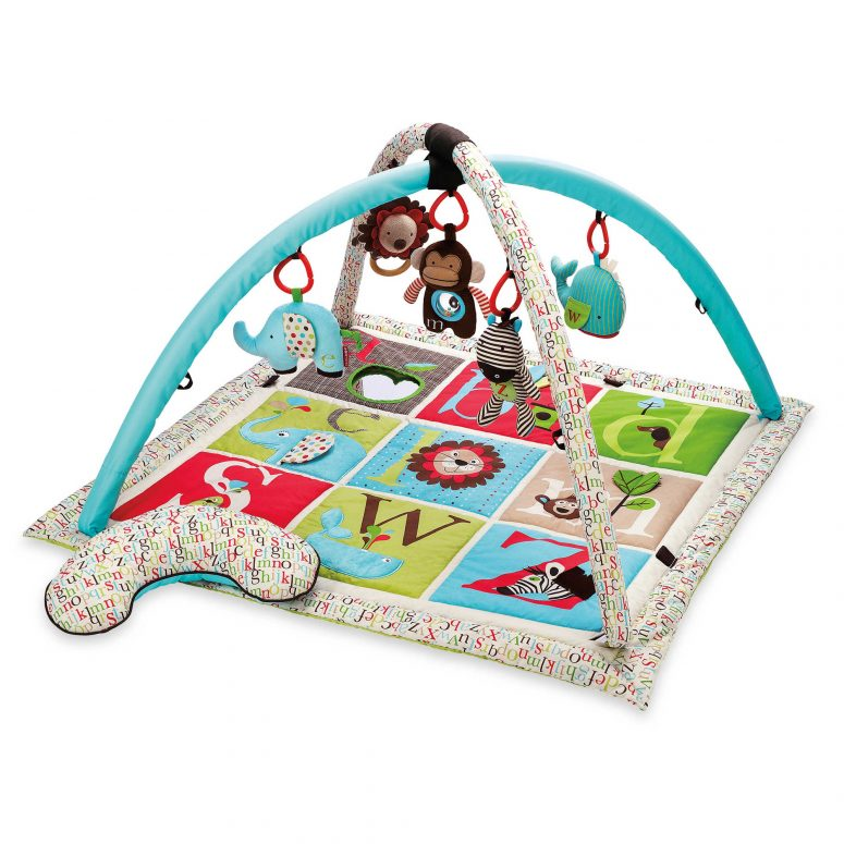 Skip*Hop Activity Gym