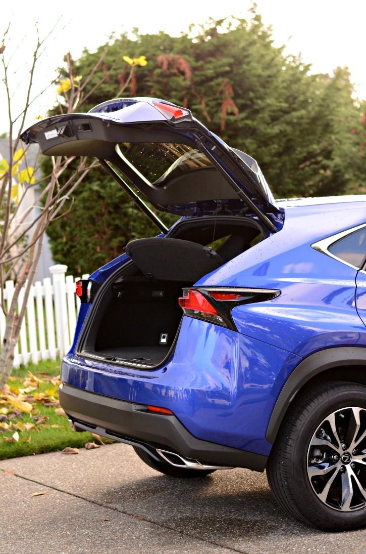 Lexus NX Trunk Cover