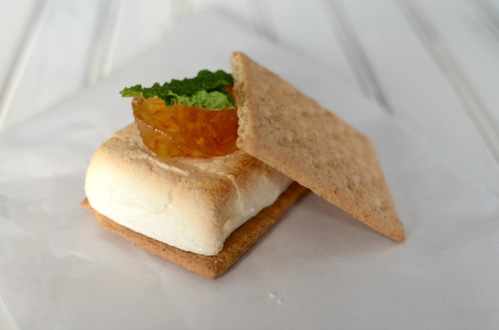 Gourmet s'more with Orange marmalade and mint