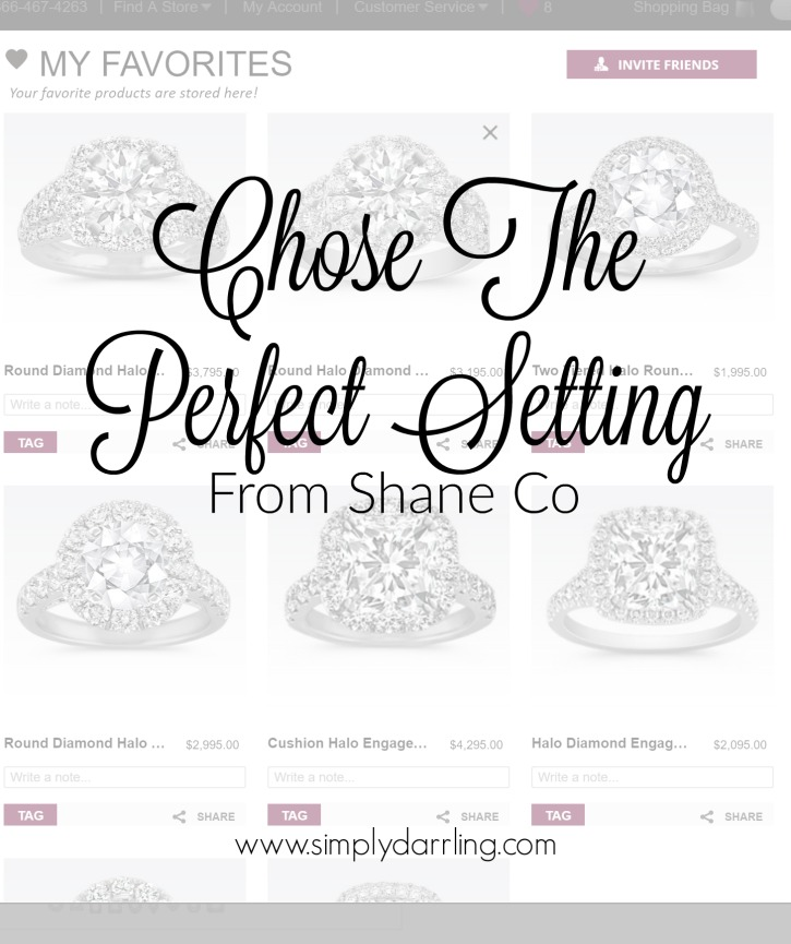 Find the perfect Engagement or Wedding ring setting at Shane Co