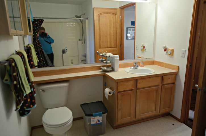 Before Shot of the Updated Guest Bathroom