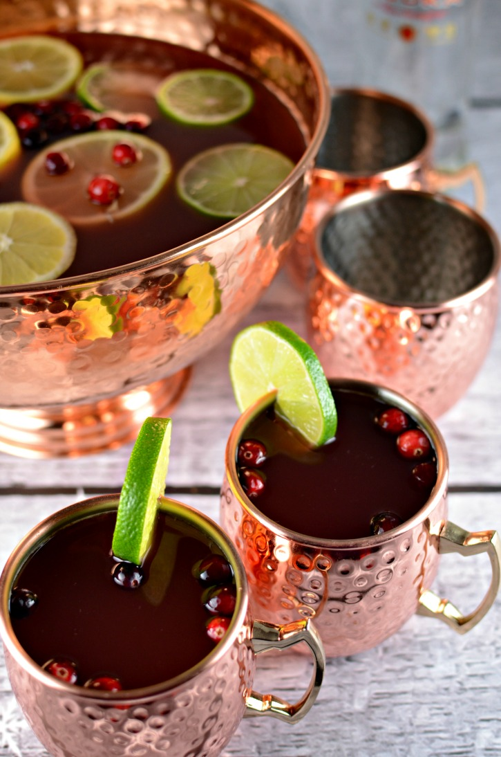 Holiday Cranberry Vodka Punch - A Christmas Cocktail Recipe
