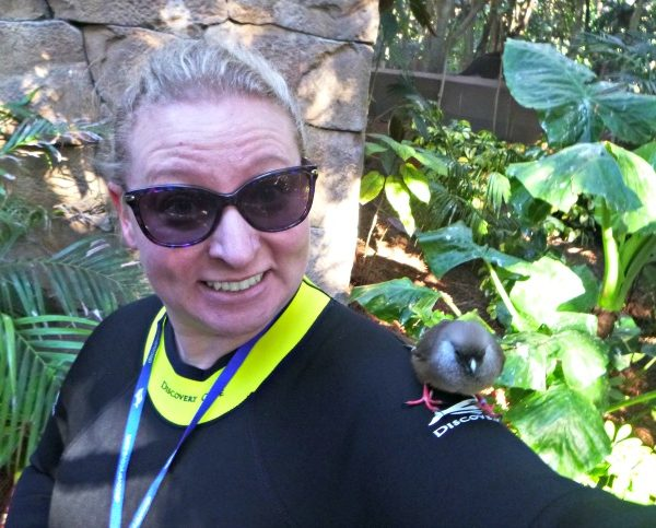 Spending A Day At Discovery Cove