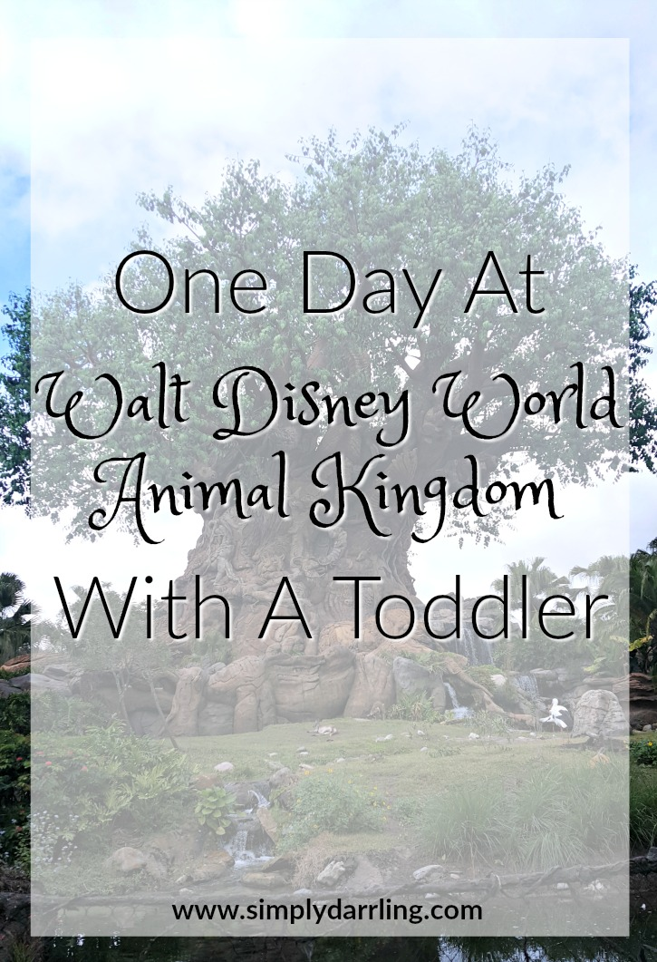 One Day At Walt Disney World Animal Kingdom With A Toddler