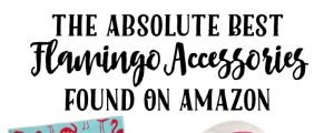 The Absolute Best Flamingo Accessories Found On Amazon