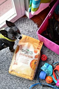 Ultimate Outdoor Doggy Basket with Purina Beyond