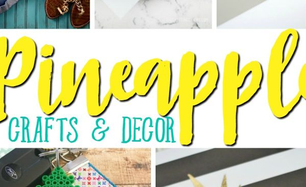 Amazing Pineapple Crafts & Decor