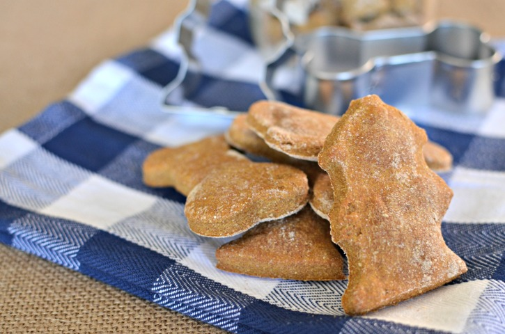 Peanut Free Pumpkin Spice Dog Treats
