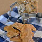 Peanut Free Pumpkin Spice Dog Treats