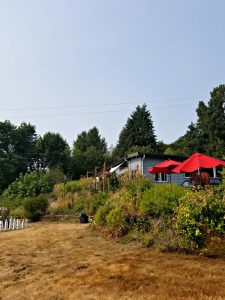 Woodinville Wine Country - A Seattle Area Staycation