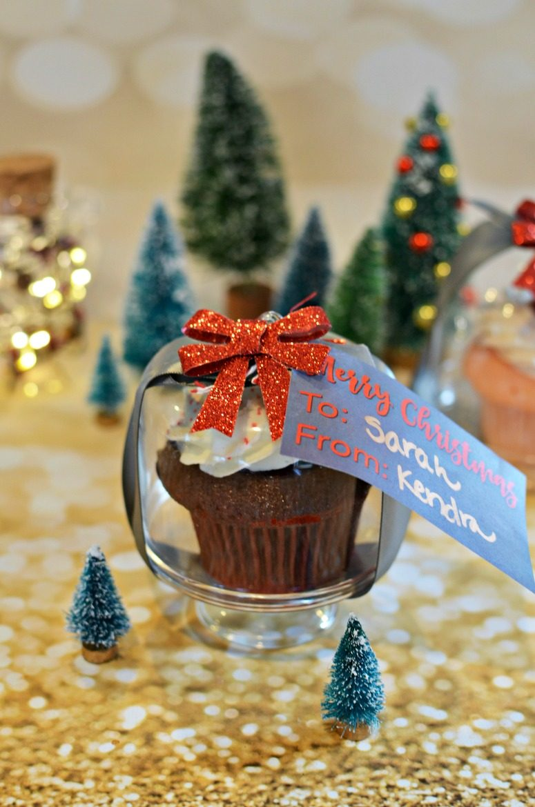 Glass Dome Cupcake Holder for Christmas Gifts