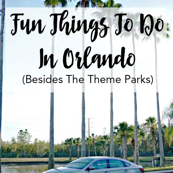 Fun Things To Do In Orlando (Besides The Theme Parks)