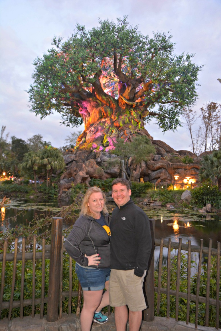 Visiting Disney's Animal Kingdom As An Adult