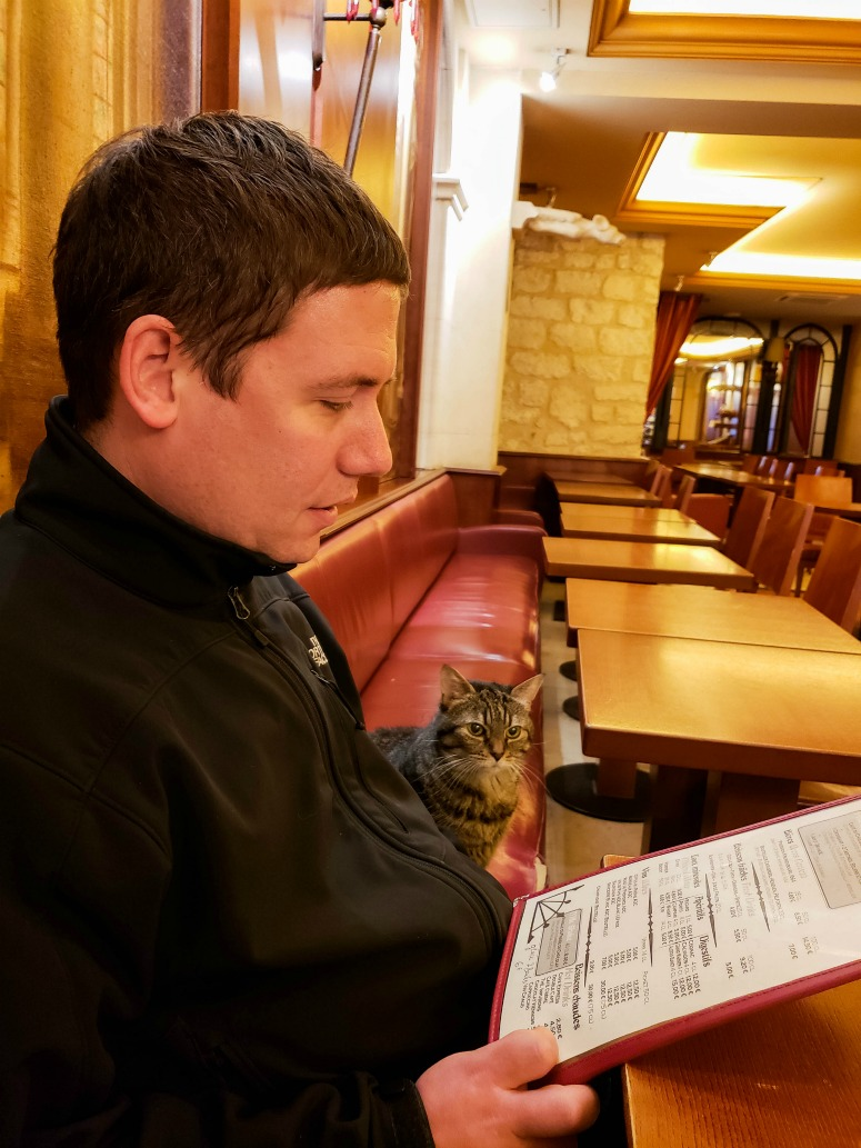 Man with Cat in a Parisian Cafe