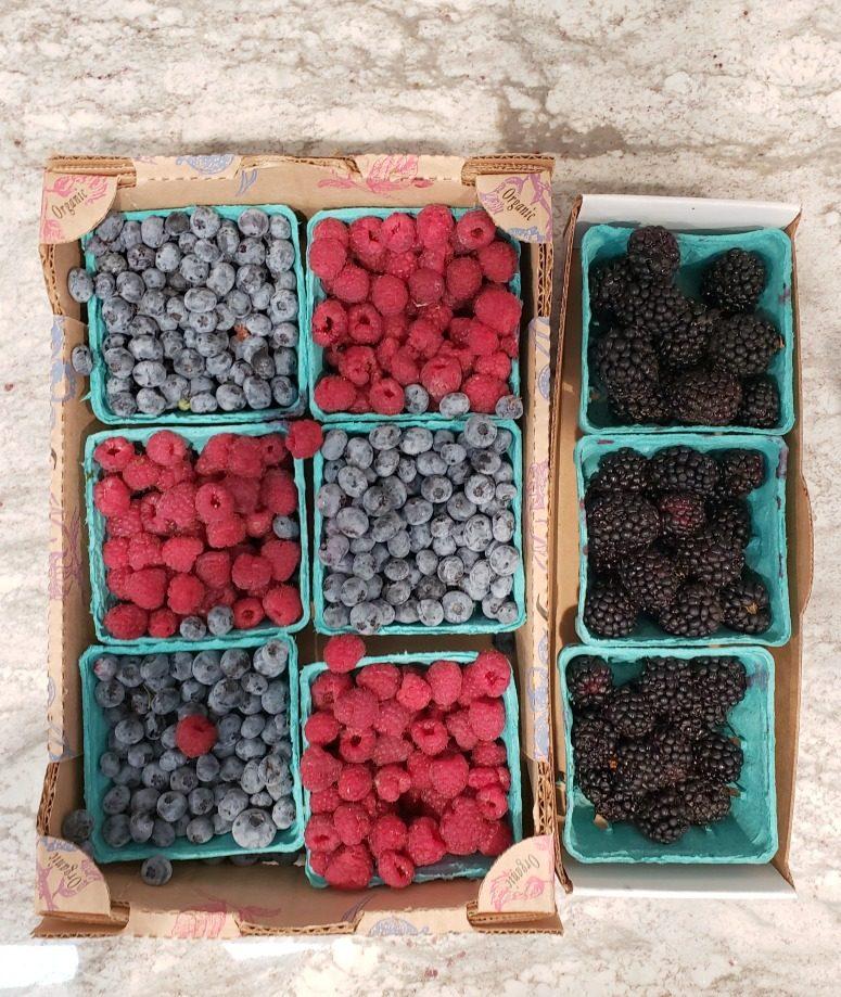 Fresh Farm Berries