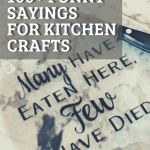 100+ Funny Sayings For Kitchen Crafts