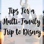 Tips For A Multi-Family Trip to Disney